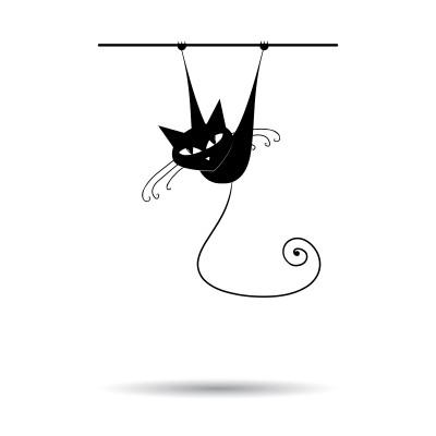 chat-juin
