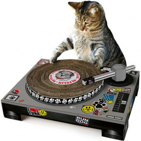 griffoir platine dj chat
