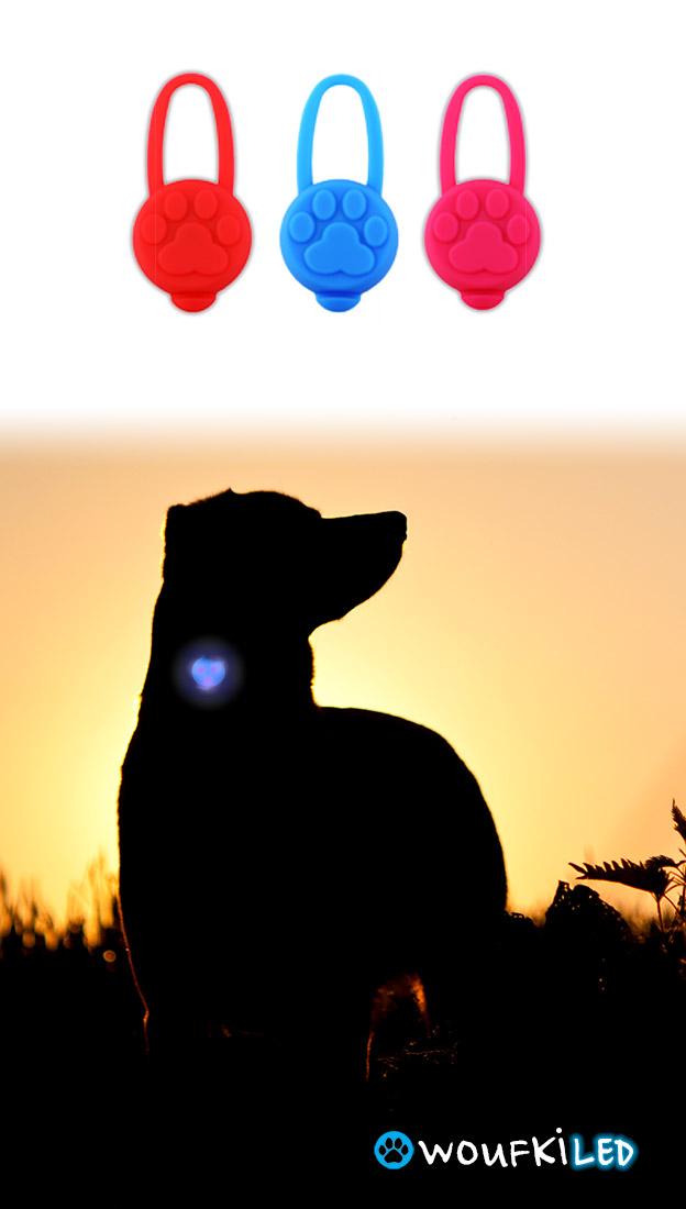 animaux-woufki-v2