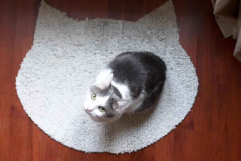 diy-tapis-pour-chat