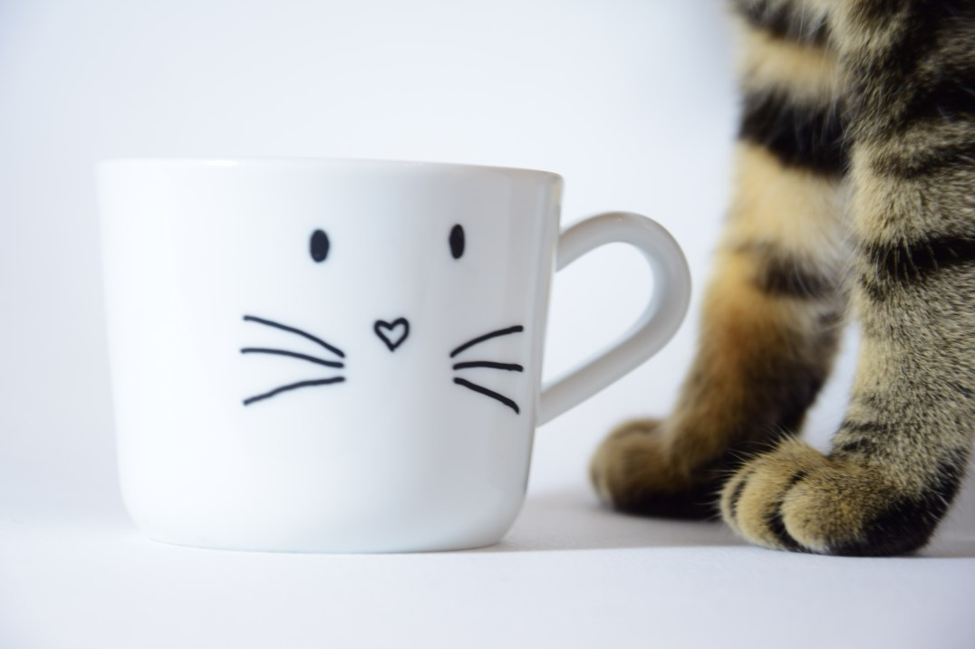 mug chat diy