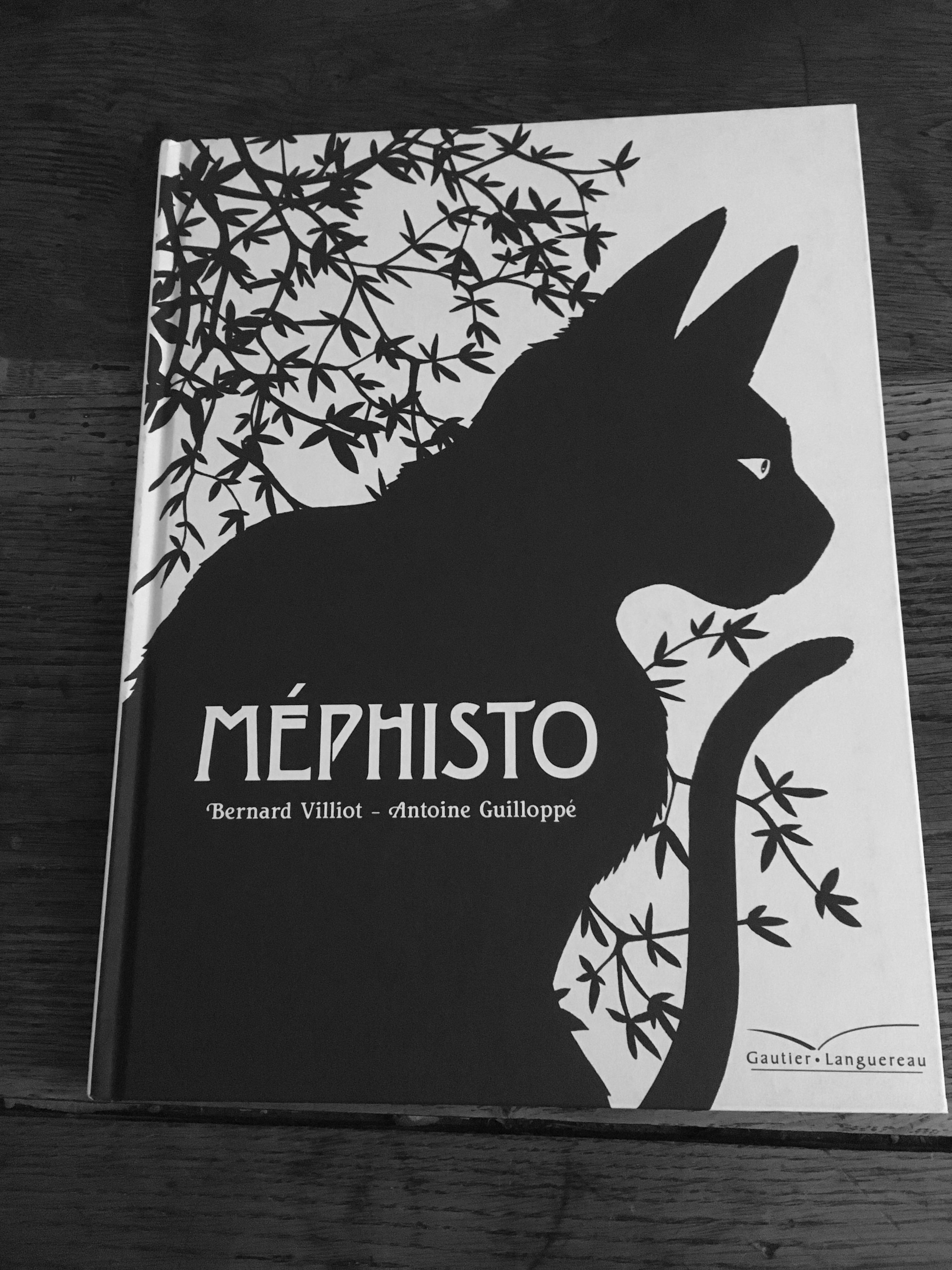 Méphisto chat
